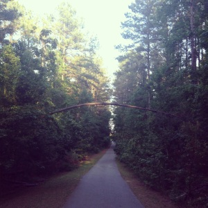GrovetownTrails2